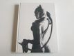 Batman Arkham City Limited Edition Strategy Guide